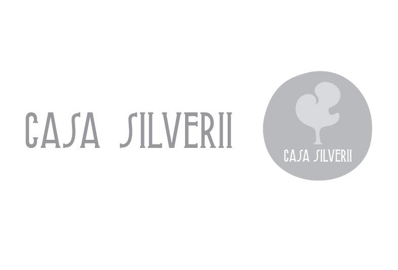 casa_silverii_04